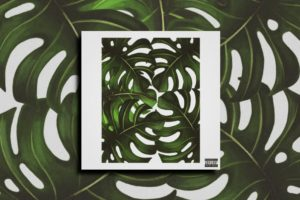 "KEMPER GRANT – ""Jungle"" Exclusive Review!"