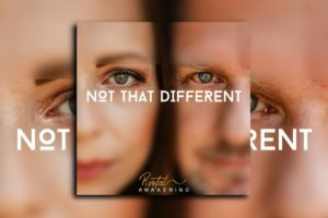 "PIVOTAL AWAKENING – ""Not That Different"" Exclusive Review!"